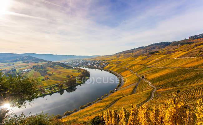 Rio entre montanhas com wineyrds — Fotografia de Stock