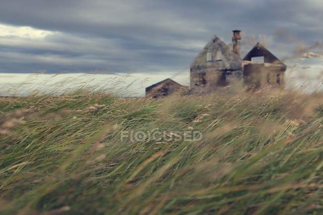 House ruins on field in Iceland — Stock Photo