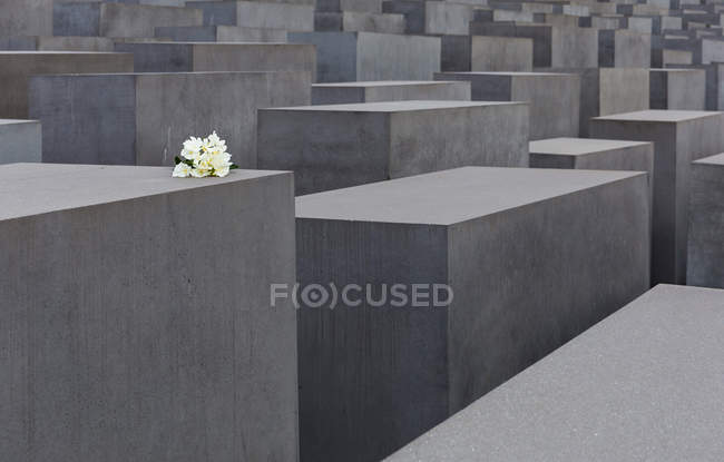 Holocaust memorial in Berlin, concrete blocks with flowers — Foto stock