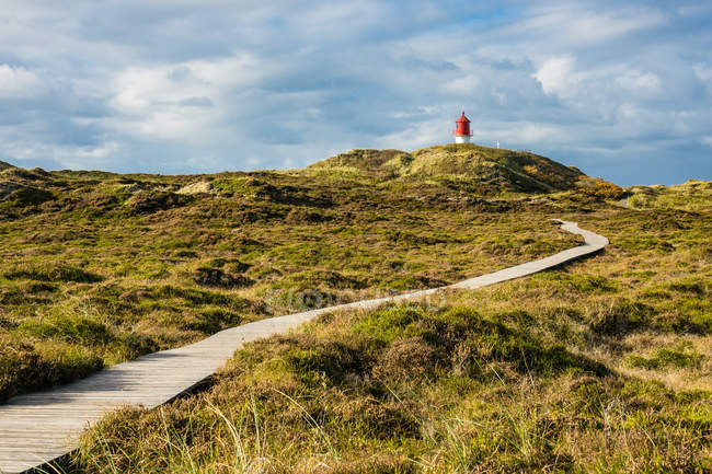 Зеленое поле и видом на маяк — стоковое фото