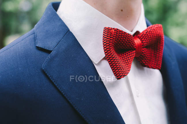 78e5abc4 Cropped view of man in suit, shirt and red bow tie — selective focus ...