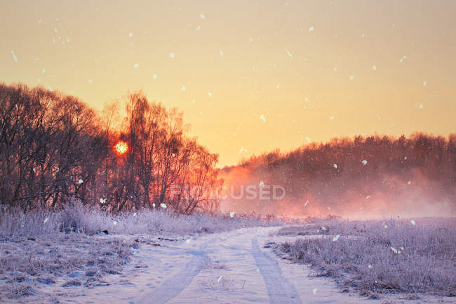 Winter misty sunrise. — Stock Photo