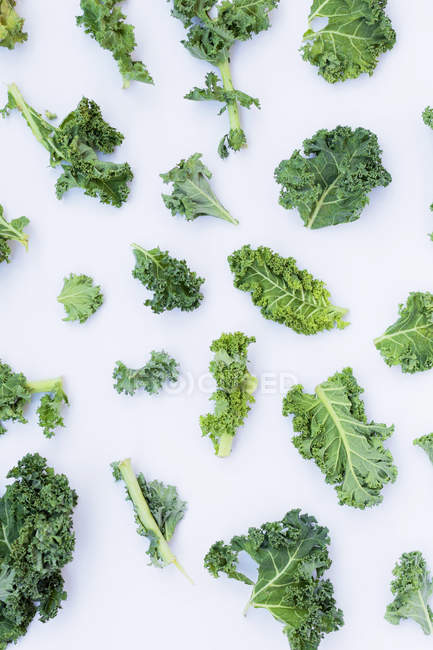Salad leaves composition on white surface — Stock Photo