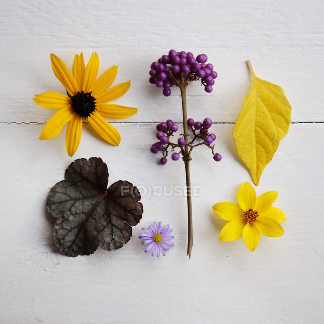 Still life of flowers and leaves on table — Stock Photo