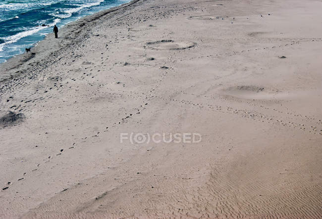 Sand beach and walking man with dog on seaside — стоковое фото