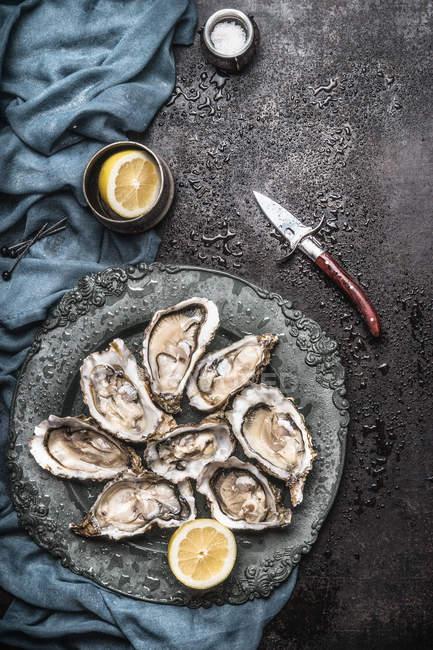 Seashells with lemons on plate — Stock Photo