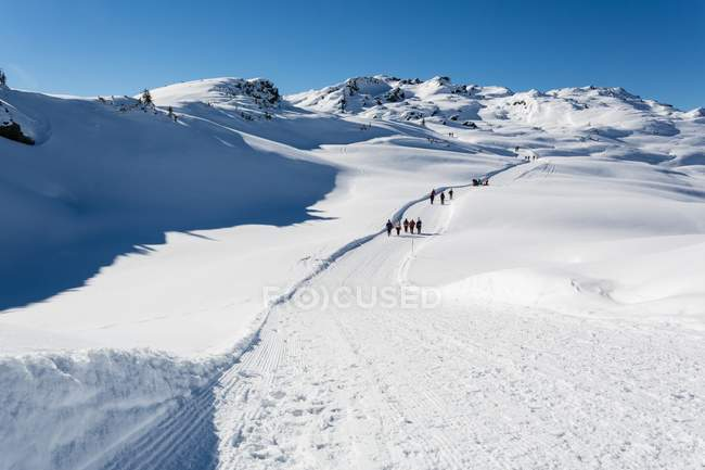 Group of hikers walking in snowy mountains — Stock Photo