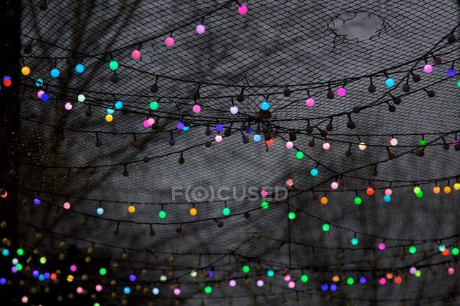 Colorful garland among trees behind torn net glowing in dark — Stock Photo