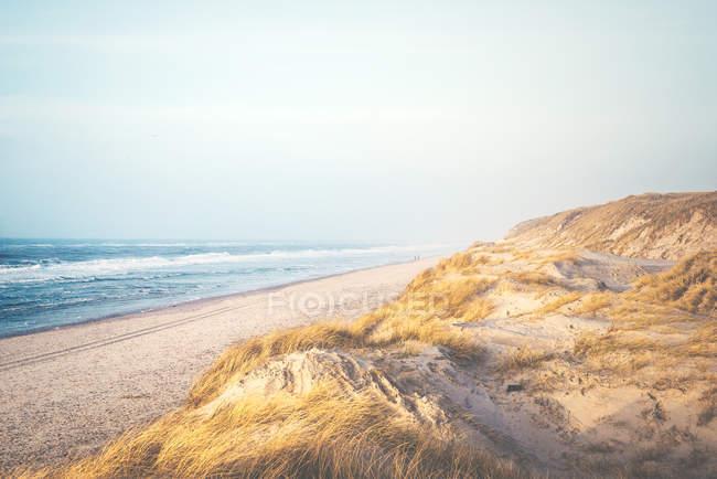 Cênica cena costeira na Dinamarca — Fotografia de Stock