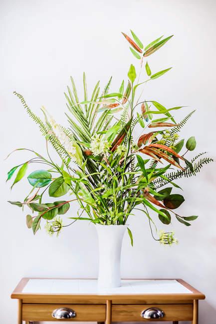 Innenausstattung mit grünen Blattpflanzen — Stockfoto