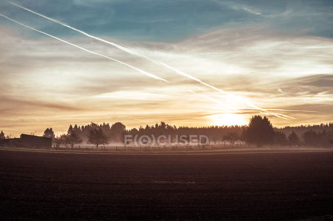 Agricultural field in morning sunshine — Stock Photo