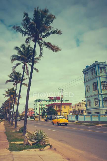 Желтый автомобиль на дороге и пальмы на одной из улиц Гаваны, Куба — стоковое фото