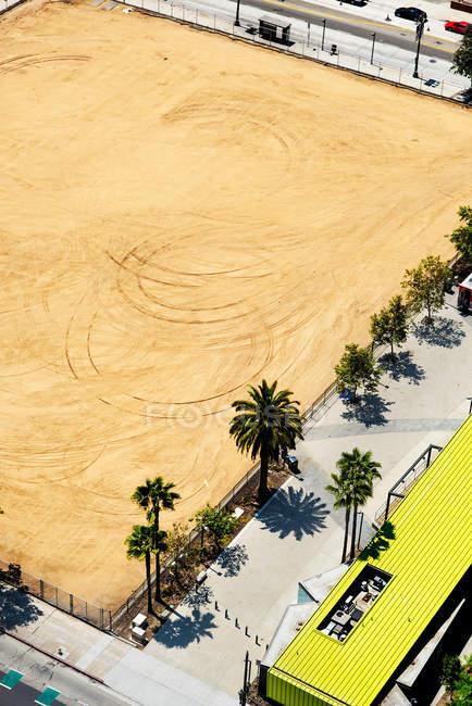 Crescente verde palmeiras na praia da cidade — Fotografia de Stock