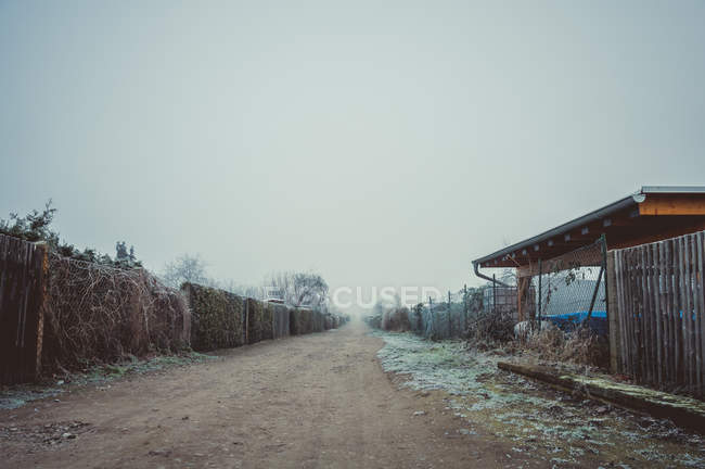 Countryside scene with empty street in fog — Stock Photo