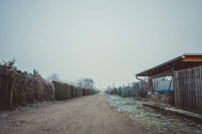 Cena de interior com rua vazia no nevoeiro — Fotografia de Stock