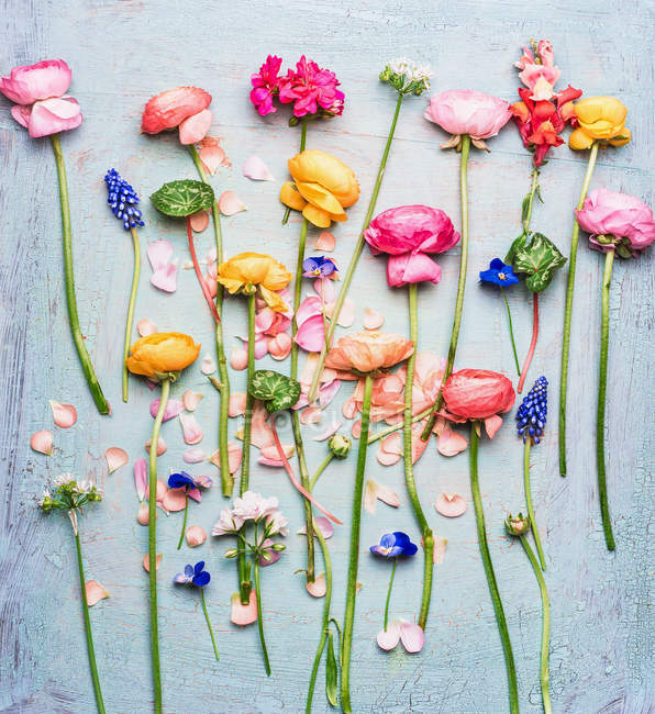 Floral Composition With Flowers On Rustic Background Stock Photo