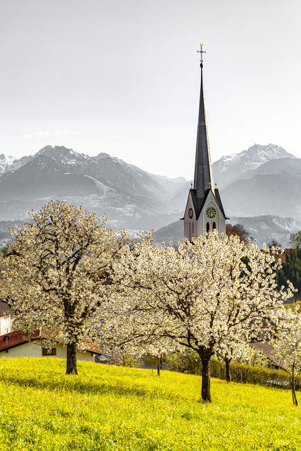 Scenic view of top of church in hallstatt, austria — Stock Photo