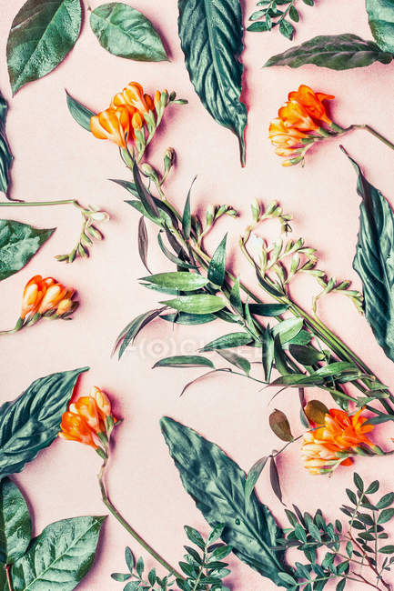 Floral composition with leaves pattern on pastel toned background — Stock Photo