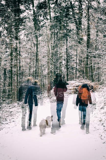 Rückansicht des Menschen wandern im verschneiten Wald mit Hund, Bewegungsunschärfe — Stockfoto