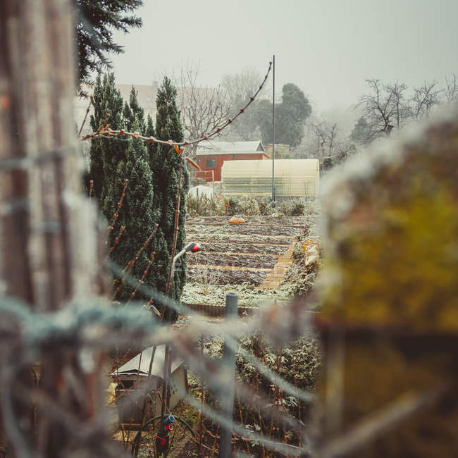 Countryside garden with house behind fence in foggy weather — Stock Photo
