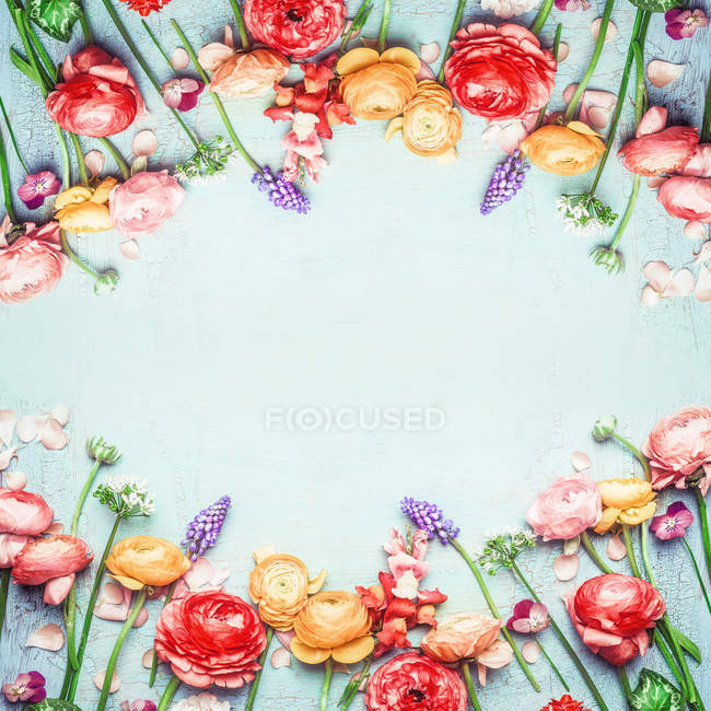 Floral frame with flowers on blue background — Stock Photo