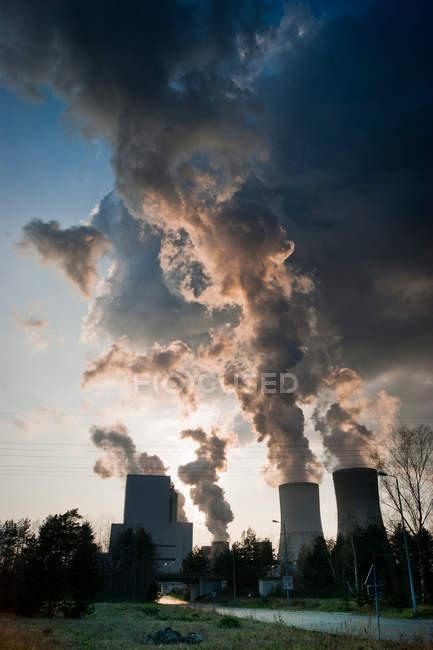 Cottura a vapore tubi di impianto industriale sopra gli alberi — Foto stock