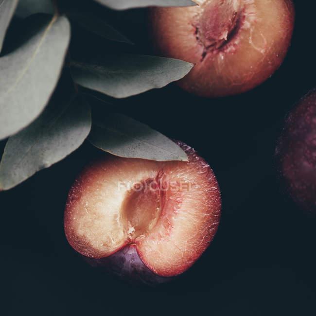 Pflaume-Hälften mit Blättern — Stockfoto