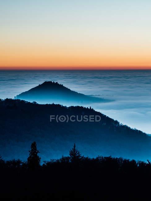 Nebel im Wald am Morgen — Stockfoto