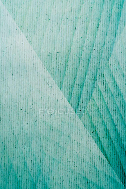 Close-up view of exotic leaves — Stock Photo