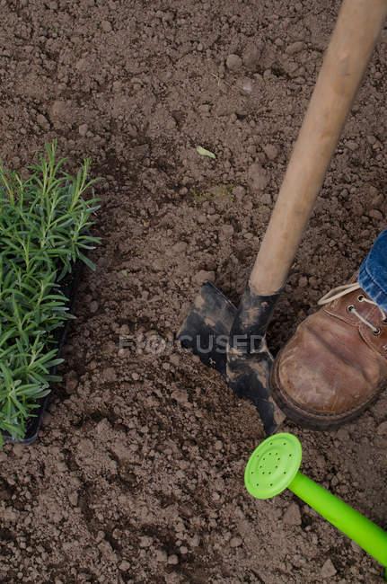 Person digging garden soil — Stock Photo