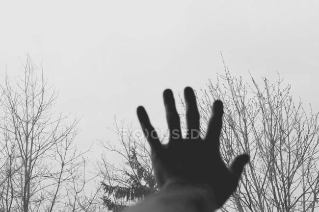 Close-up view of hand reaching for sky — Stock Photo