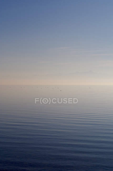 Sea water surface texture view — Stock Photo