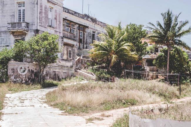 Casa colonica abbandonata con le palme in giardino, Cuba — Foto stock