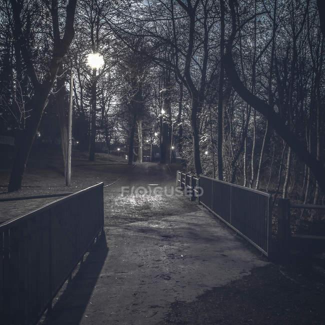 Ночь в городском парке с подсветкой уличные фонари — стоковое фото