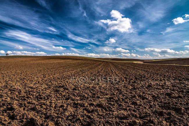 Scenic harvested field view — Stock Photo