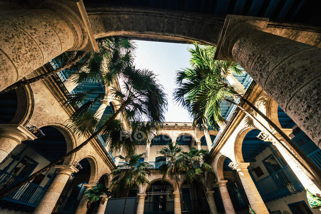 Bottom view of Havana architectural building and palm trees, Cuba — Stock Photo