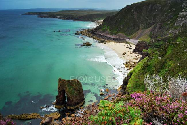 Rocky coastline and colorful flora — Stock Photo