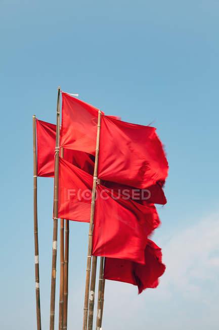Денного зору з розмахуючи червоними прапорами бамбук поляків — стокове фото