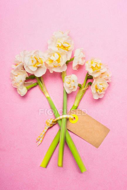 Composizione Floreale Con Fiori Del Narciso Ed Etichetta Su Sfondo