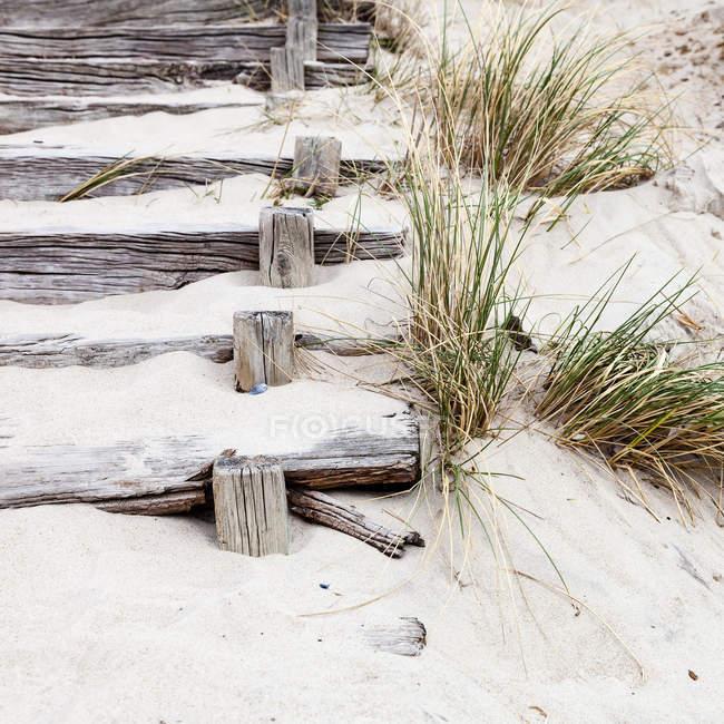 Resistiu a escada de madeira na areia da praia, vista closeup — Fotografia de Stock