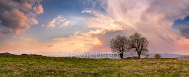 Sunny spring evening. — Stock Photo