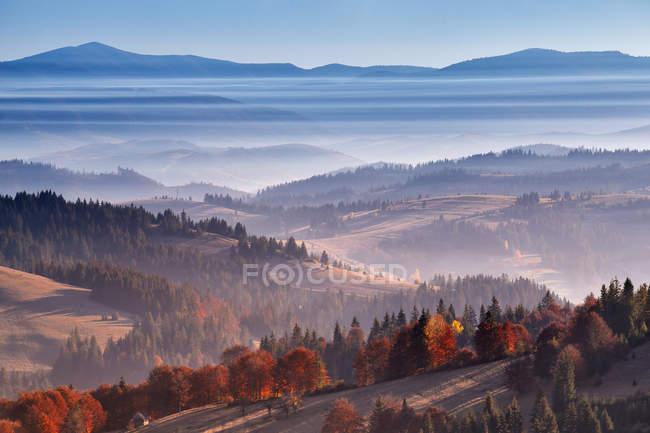 Утренний туман в горах — стоковое фото