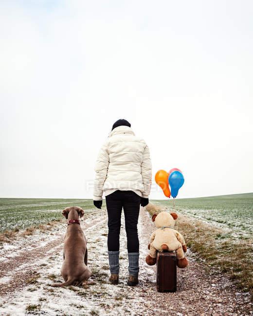 Arrière, vue de femme avec valise de chien, jouet chien et ballons à air extérieurs par les champs — Photo de stock