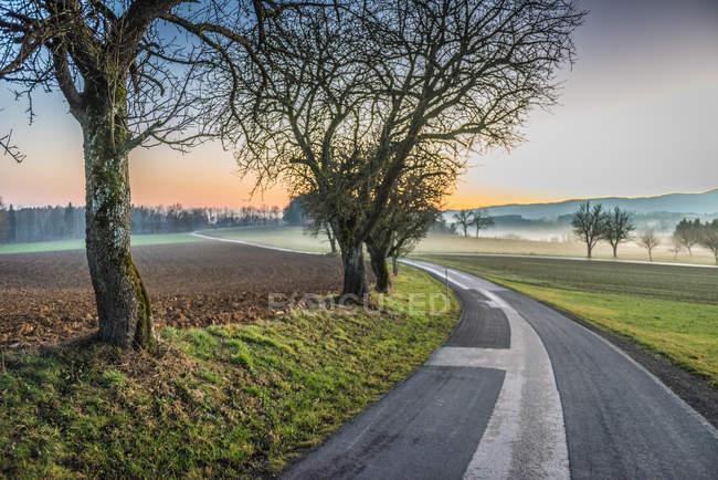 Дорога через поля в туманной погоды — стоковое фото