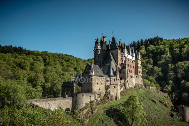 Eltz Castle on mountain hill with trees — Stock Photo