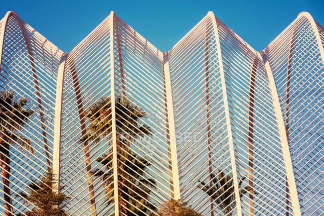 Cultivo de palmeiras verde tropical e arquitetura moderna — Fotografia de Stock