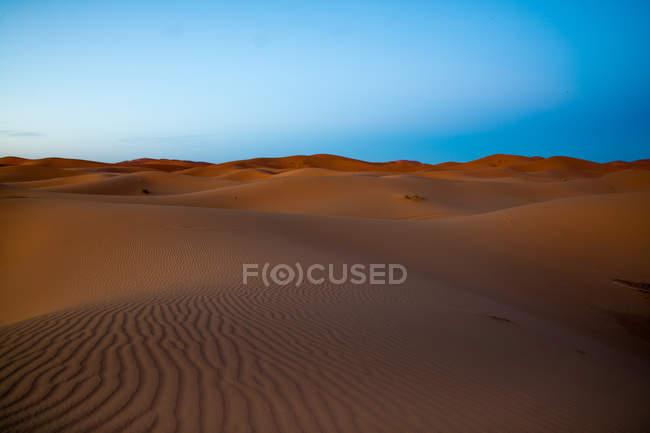 Coucher de soleil sur les dunes du désert — Photo de stock