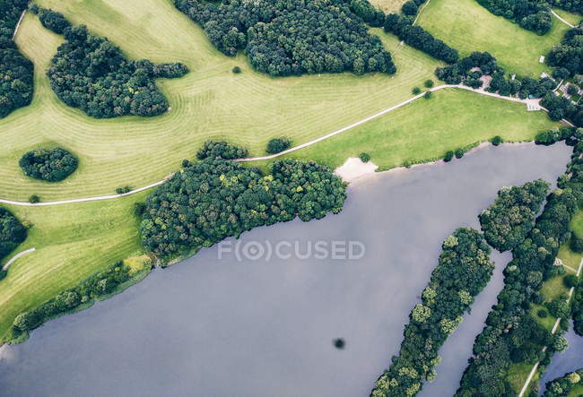 Aerial view on landscape with greenery trees in forest and river — Stock Photo