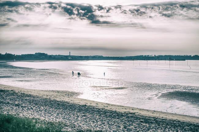 Personnes marchant sur la mer baie — Photo de stock