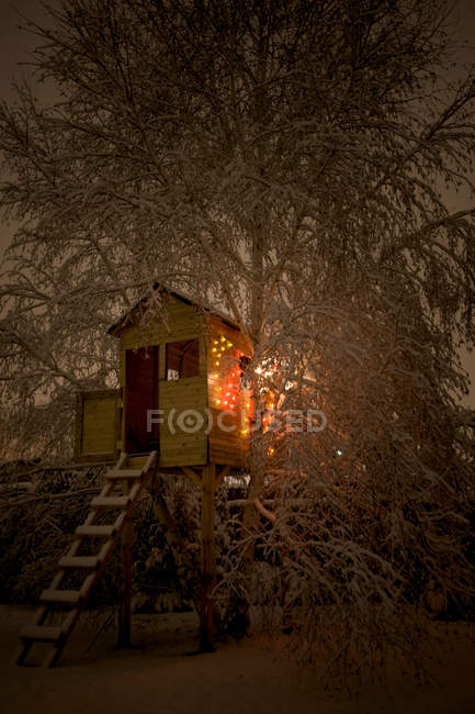 Natural scene with illuminated wooden hut in snowy winter forest — Stock Photo
